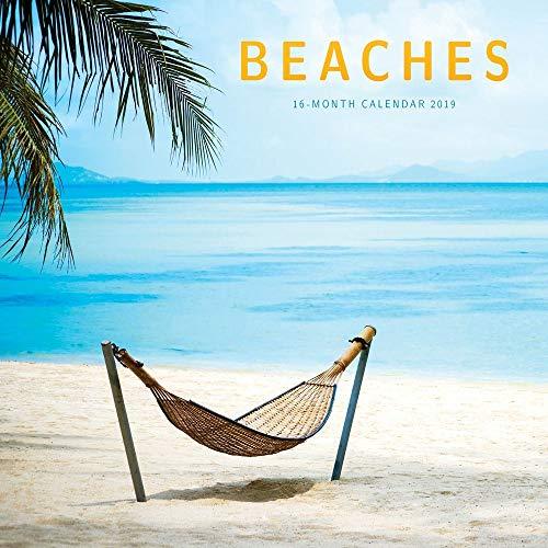 2019 Beaches Mini Wall Calendar, Beaches by Carousel Calendars