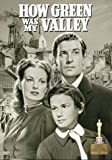 How Green Was My Valley by Walter Pidgeon
