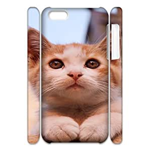 THE CAT CHA2067070 3D Art Print Design Phone Back Case Customized Hard Shell Protection Iphone 5C