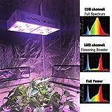 PARFACTWORKS 500W CREE COB Grow Light LED Full