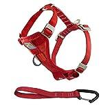 Kurgo Dog Harness | Car Harness for Dogs | Pet Safety Seat Belt | Certified Crash Tested Harness | Car Seatbelt | Tru-Fit Enhanced Strength Style | Red | Medium