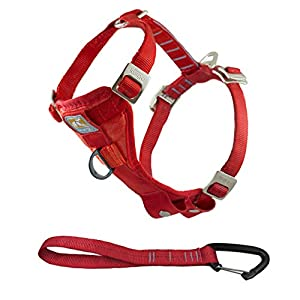 Kurgo Tru-Fit Crash Tested Dog Harness, Enhanced Strength Dog Vest, Dog Safety Harness with Pet Seat Belt Tether for Car… Click on image for further info.