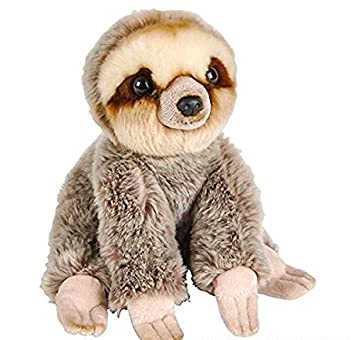 Amazon Com Wildlife Tree 12 Sloth Stuffed Animal Plush Floppy