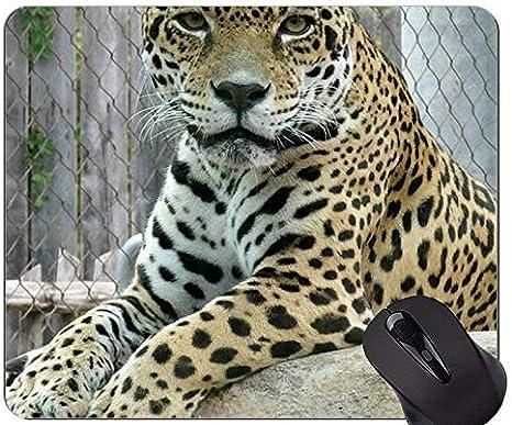 Yanteng Alfombrilla de ratón Antideslizante para Juegos de Goma, Alfombrillas de ratón con Forma de Gato Jaguar y Leopardo