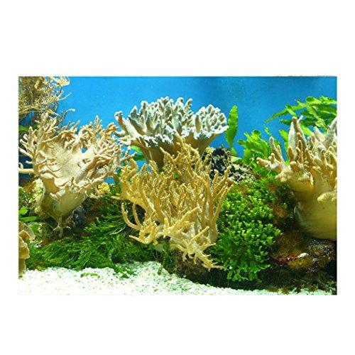 YOKOU Decorative Wallpaper Aquarium Background Fish Tank Backdrop Static Cling Wallpaper Sticker, Coral 24''x15.7'' by YOKOU