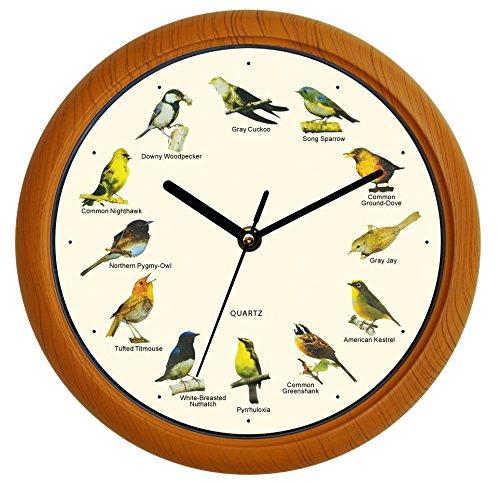 4 o clock birds singing