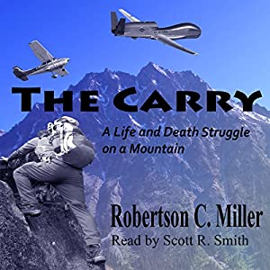 The Carry Audiobook