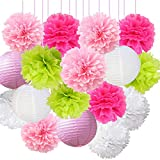 16pcs Pom Poms Decorations Tissue Paper Flowers Ball Mixed Paper Lanterns Craft Kit for Pink Themed Birthday Party Decor Baby Shower Decor Bridal Shower Decor Wedding Party Decorations