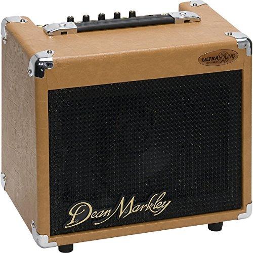 dean acoustic guitar amp - 3