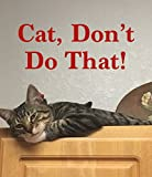 Cat, Don't Do That!