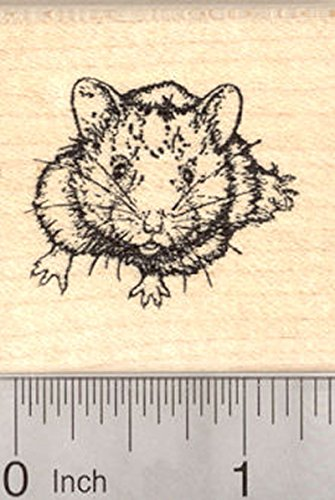 Small Hamster Rubber Stamp, Golden or Syrian Hampster