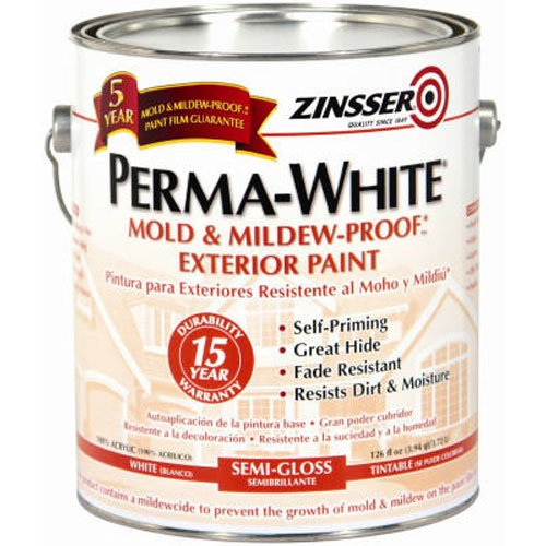 RUST-OLEUM 3131 Mildew-Proof Exterior Paint (Best Paint For Mold)