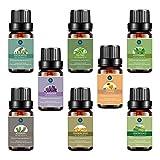 Beauty : Top 8 Essential Oils Set,Pure Therapeutic Grade Aromatherapy Oils,Lavender,Eucalyptus,Lemongrass,Frankincense,Orange,Rosemary,Peppermint,Tea Tree Essential Oils
