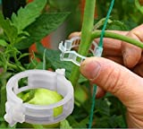 Plant Clips Plant Ties Plant Holder Flower Clips Vegetable Clip Vines Fixed Clamp for Garden & Flowers Keep Plant Stems Grow Straight Pack of 50