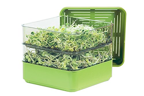 Grow Alfalfa Sprouts - Gardens Alive Two-Tiered Seed Sprouter