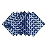 DII Lattice Cotton Napkin for Brunch, Weddings, Showers, Parties and Everyday Use - 20x 20'', Nautical Blue and White, Set of 6