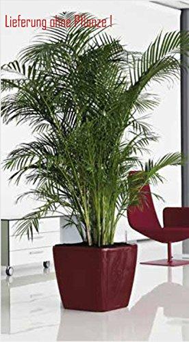 Blumenübertopf Quadro Premium, für Innen geeignet, Farbe Rot, 50x50x47cm