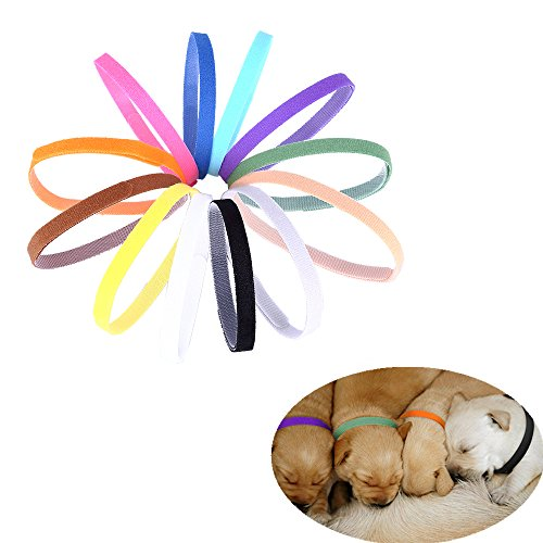 Colors Adjustable Reusable Identification Collars product image