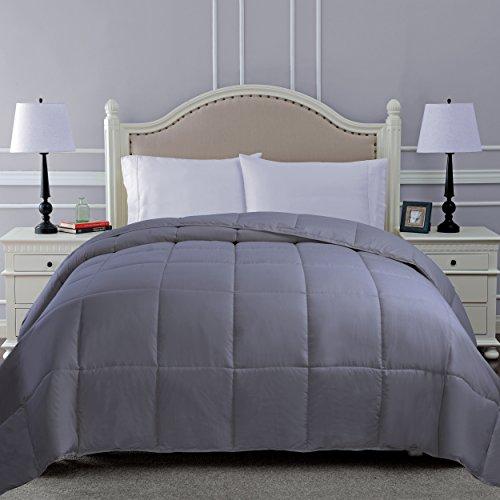 Superior Down Alternative Comforter - Bed Comforter, Medium-Fill Weight, All Season Comforter, King, Silver