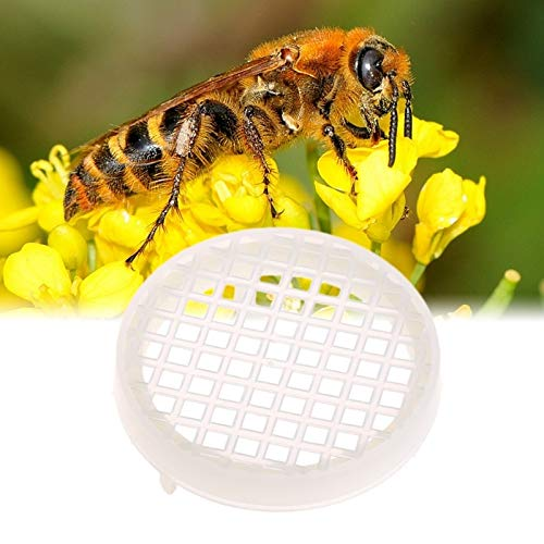 Bee Hives - 5pcs Beekeeping Round Prisoners Wang Cage Plastic White King Prisoner Bee - Tool Plastic Toolbox Sound Shelves Tools Hives Beehive Door Hive Cosplay Prison Cage Tool Beehiv -