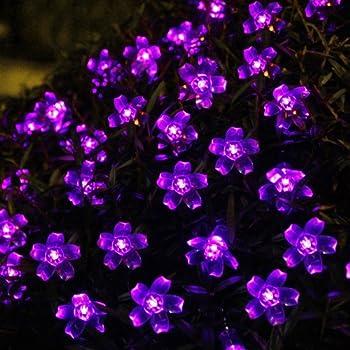 Innoo Tech Solar Outdoor String Lights 21ft 50 LED Purple Blossom Christmas Lights for Bedroom & Innoo Tech Solar Outdoor String Lights 21ft 50 LED Purple Blossom ...