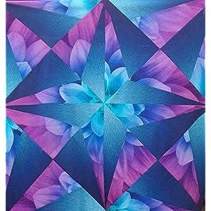 Amazon com: Pattern,Fractured Flowers~Using Dream Big Panel