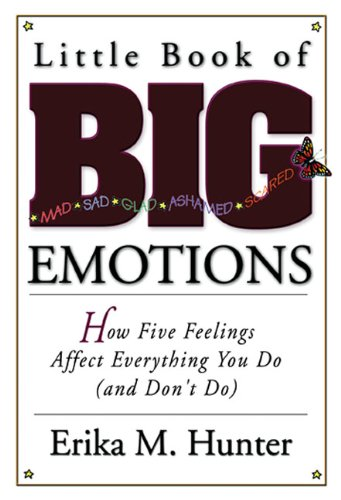 how emotions affect learning Classrooms are emotional settings students' emotional experiences can impact on their ability to learn, their engagement in school, and their career choices.