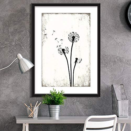 Framed Dandelion in Black White Black Picture Frames White Matting