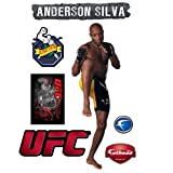 UFC Anderson Silva Wall Graphic