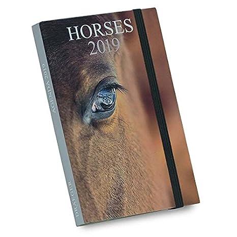Draeger 72000153 - Agenda de bolsillo caballos 2019: Amazon ...