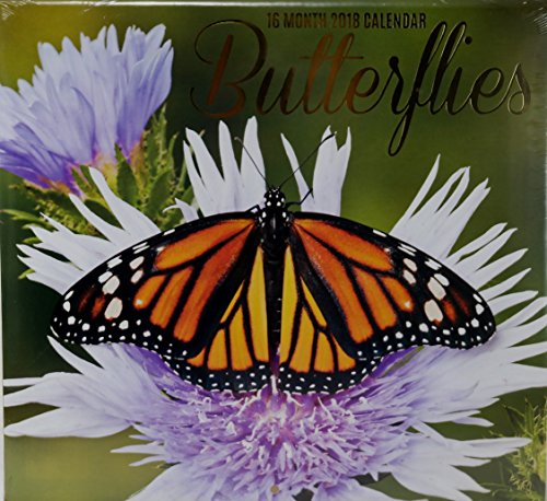 Butterfly Calendar - 2018 Butterflies Color Monthly Wall Calendar, 12 x 22 Inches