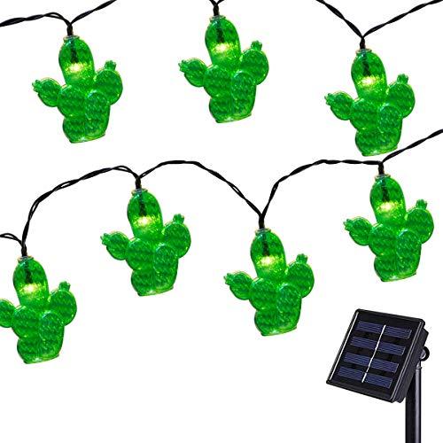 Cactus Garden Christmas Lights