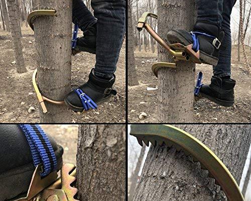 HUAWELL - Par de Pinchos para Escalada de árboles Profesionales ...