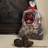 Chimney 47148 Magical Color Pine Cones 2.5 lb. Bag Burn Blue and Green Review