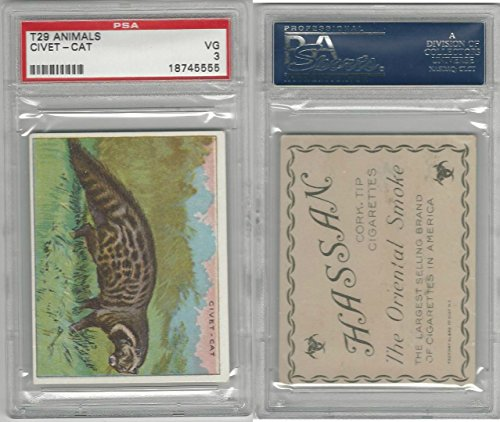 T29 Hassan Cigarettes, Animals, 1911, Civet Cat, PSA 3 VG from OpenBinders