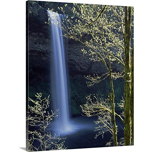 (GREATBIGCANVAS Gallery-Wrapped Canvas Entitled Water Falling into a Creek, Silver Creek, South Falls, Silver Falls State Park, Oregon by 38