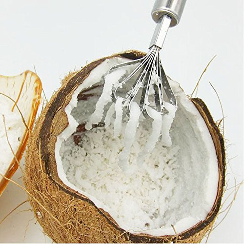 ♛Euone Coconut Shaver ♛Clearance♛, Stainless Steel Fruit Fish Skin Scale Peeler Coconut Shaver Kitchen Accessories