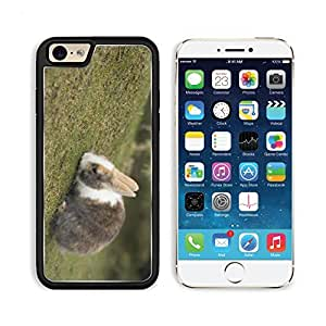 Rabbit Outdoor Nature Pets Cotton Tail Animal Apple iPhone 6 TPU Snap Cover Premium Aluminium Design Back Plate Case Customized Made to Order Support Ready Liil iPhone_6 Professional Case Touch Accessories Graphic Covers Designed Model Sleeve HD Template Wallpaper Photo Jacket Wifi Luxury Protector Wireless Cellphone Cell Phone