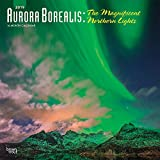 Aurora Borealis: The Magnificent Northern Lights 2019 12 x 12 Inch Monthly Square Wall Calendar with Foil Stamped Cover, USA Alaska Northern Lights (Multilingual Edition)