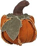 Primitives by Kathy Fabric Pumpkin Decoration, 4 x 5.5-Inch, Orange