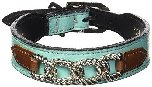 ir Dog Collar, 12 to 14-Inch, Turquoise Papaya Tabs ()