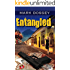 Entangled (The Ally Kendall Series Book 2)