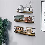 Calenzana Oval Floating Wall Shelves Set of 3