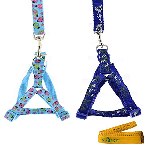 Adjustable Nylon Dog Cat Pet Harness and Leash Set for Dogs Cats Pets, 2 Pack, Light Blue Ladybird and Dark Blue Grass - Cat Harness Blue Nylon