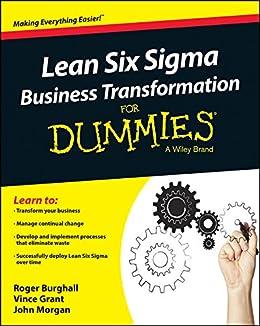 SIGMA LEAN SIX DUMMIES VOOR PDF