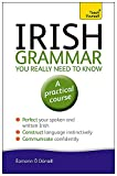 Irish Grammar You Really Need to Know %2
