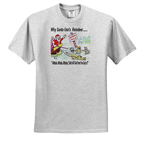 Santa Uses Reindeer (Rich Diesslins Cartoon Days of Christmas TCDC - Kevin Edler, Why Santa Uses Reindeer - T-Shirts - Adult Birch-Gray-T-Shirt 2XL (ts_2855_22))