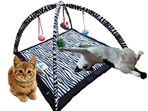 CProduct Activity Center Play Mat with Hanging Mice and Balls Cat - Hours Tower Water Shopping