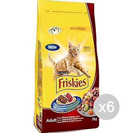Friskies Juego 6 Gato Croccantini kg 2 Manzo Pollo Verd. Comida para Gatos: Amazon.es: Productos para mascotas