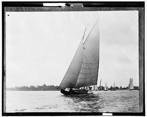 Photo: Cadillac,yachts,regattas,boats,ships,water vessels,Detroit Publishing Co,1904
